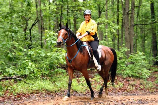 spooking responses to objects that are This way you can often preempt your horse's reactions to its environment  if you  put yourself between the horse and the object it is scared of.