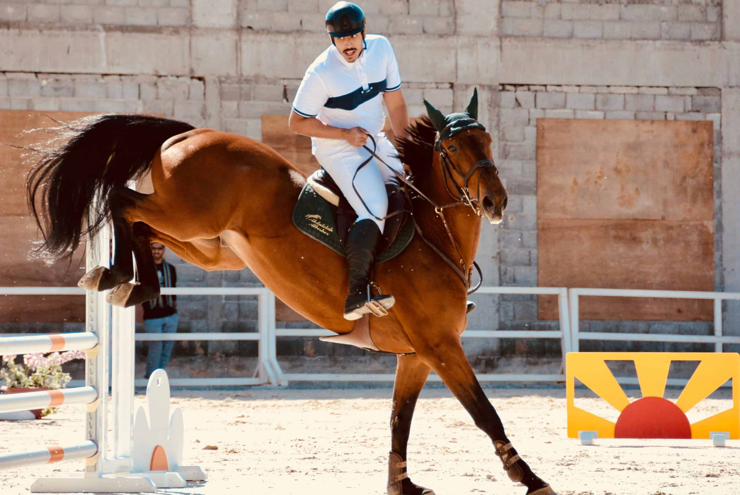 7 Reasons Why Horseback Riding Is A Sport
