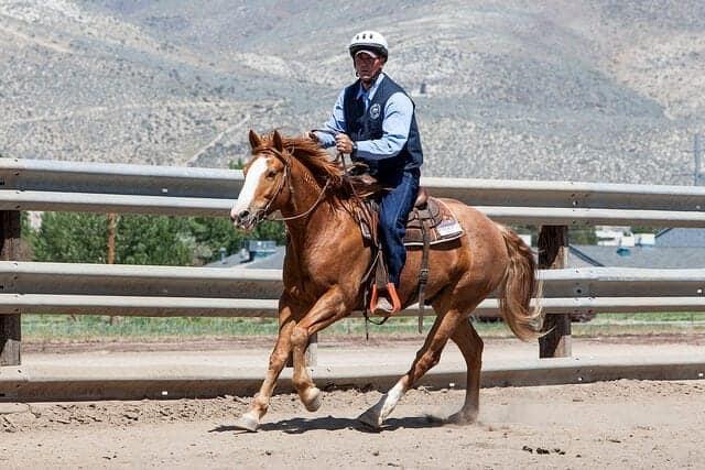 Image source: BLM Nevada via Flickr