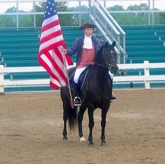 Image source: missing8519 - American Morgan Horse, CC BY 2.0,