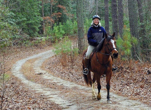 Image source: Virginia State Parks via Flickr.com