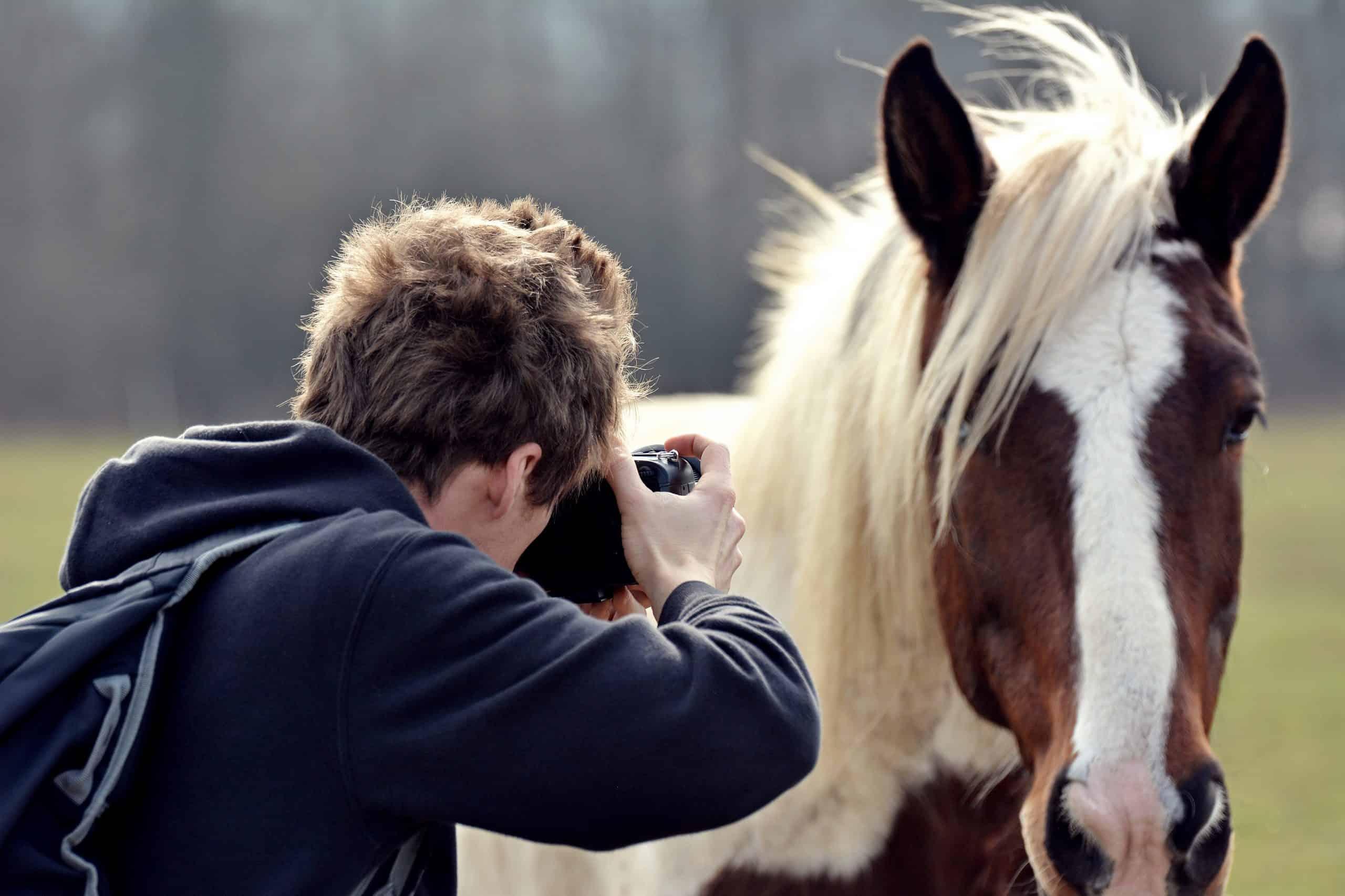 Horse Riding Photo Shoot Ideas For Equestrians
