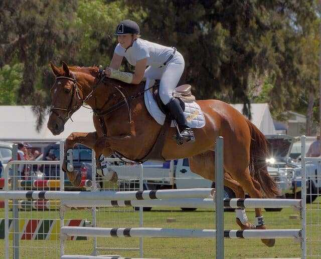11 Different Riding Styles For Your Horse Ihearthorses Com