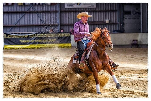 11 different riding styles for your horsereining