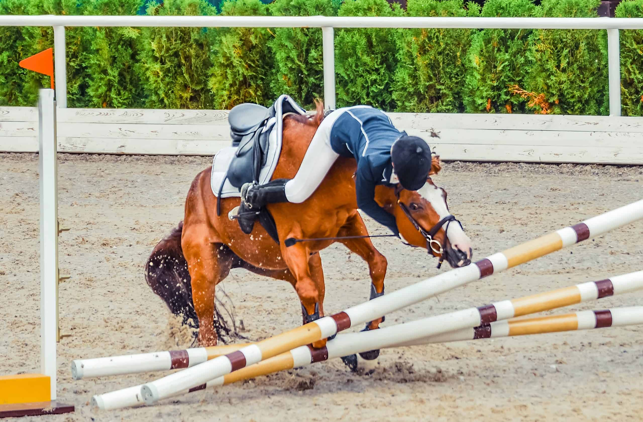 5 Ways To Regain Confidence After Falling Off A Horse