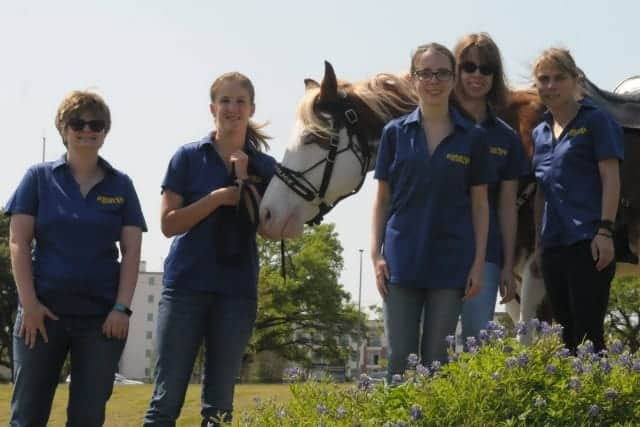 Dont Let Special Needs Students Fall >> Deaf Police Horse And His Team Of Special Needs Girls Don T Let