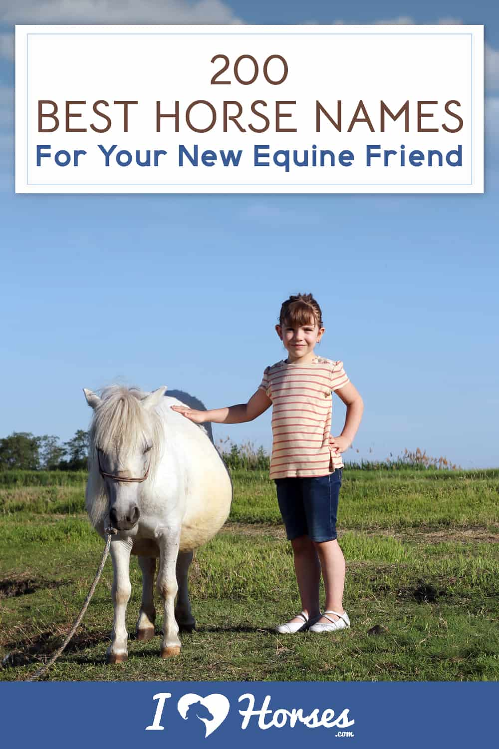 200 Horse Names For Your New Equine Friend